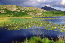 Eel Tarn in the Lake District